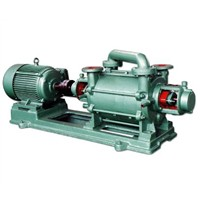 China_2SK_Liquid_Ring_Vacuum_Pump20118161022112